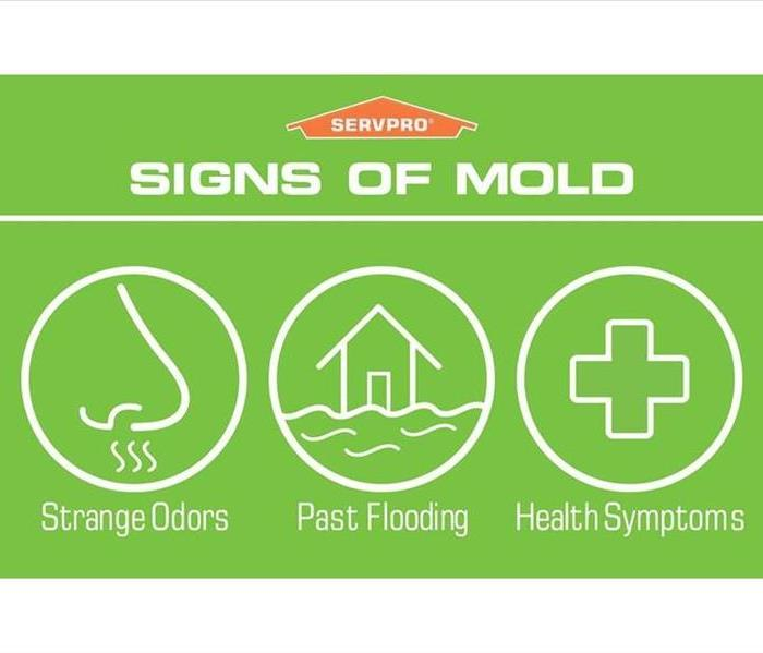 Mold signs