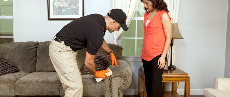 Mason, OH carpet upholstery cleaning